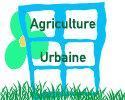 Agriculture urbaine : produire sain, local et solidaire