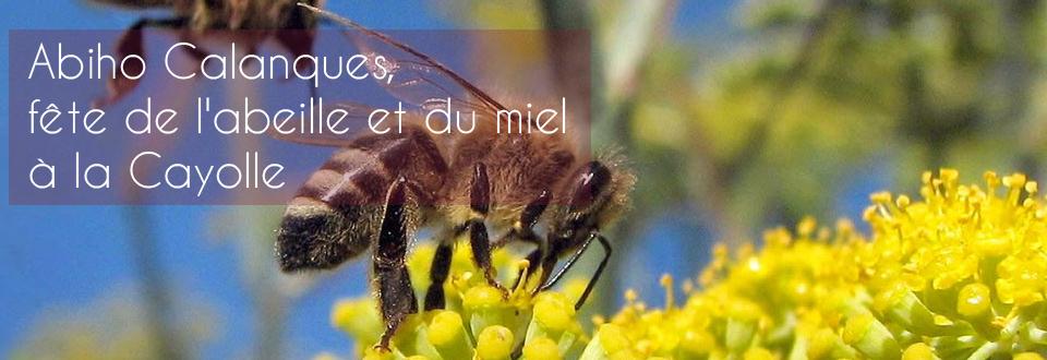 Abiho Calanques, fête de l'abeille et du miel à la Cayolle